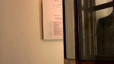 Le Grand Magasin : 1 : framing