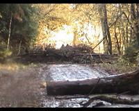 Ralley Monte Göhrde 12.11.2006