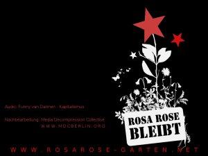 Verwüstung des Rosa Rose Garten
